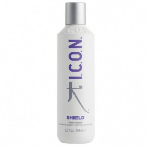 I.C.O.N. Regimedies Shield Protein Hair Treatment 250ml